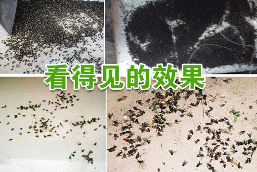 养殖场用的灭蚊蝇药