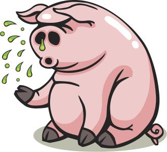 全球嚴防豬流感!!! ——豬流感的防控總結