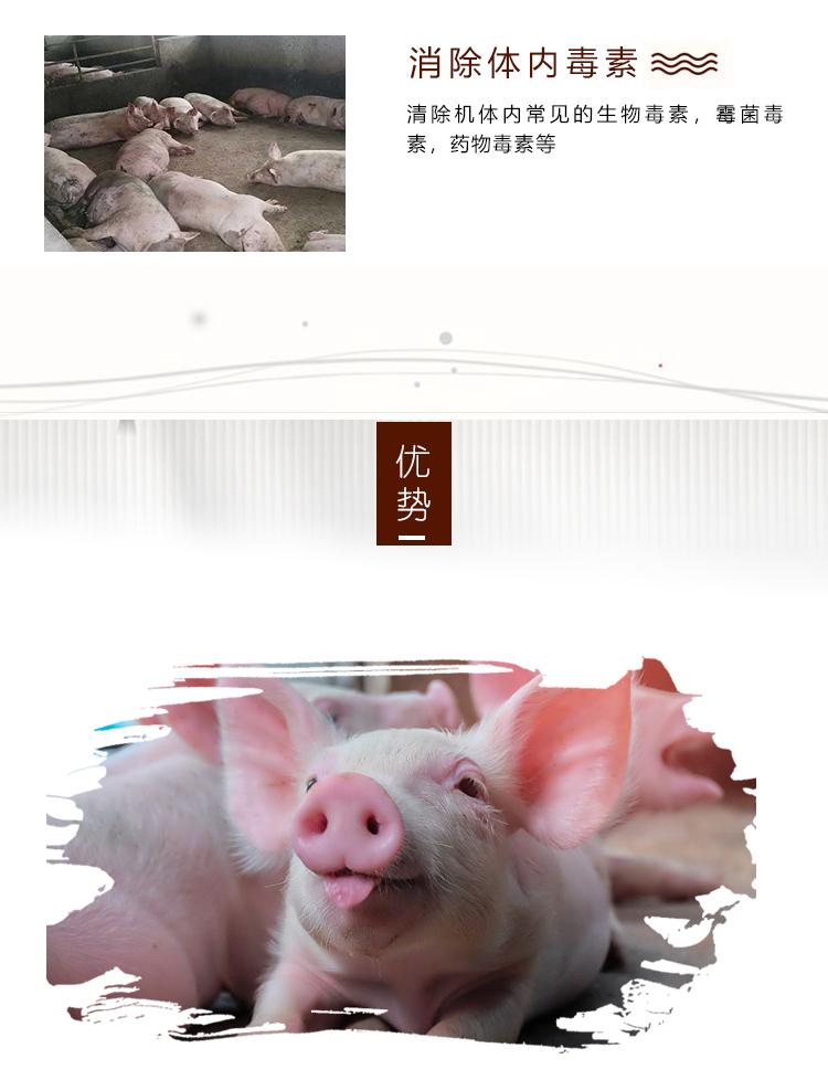 清温增免_07.jpg