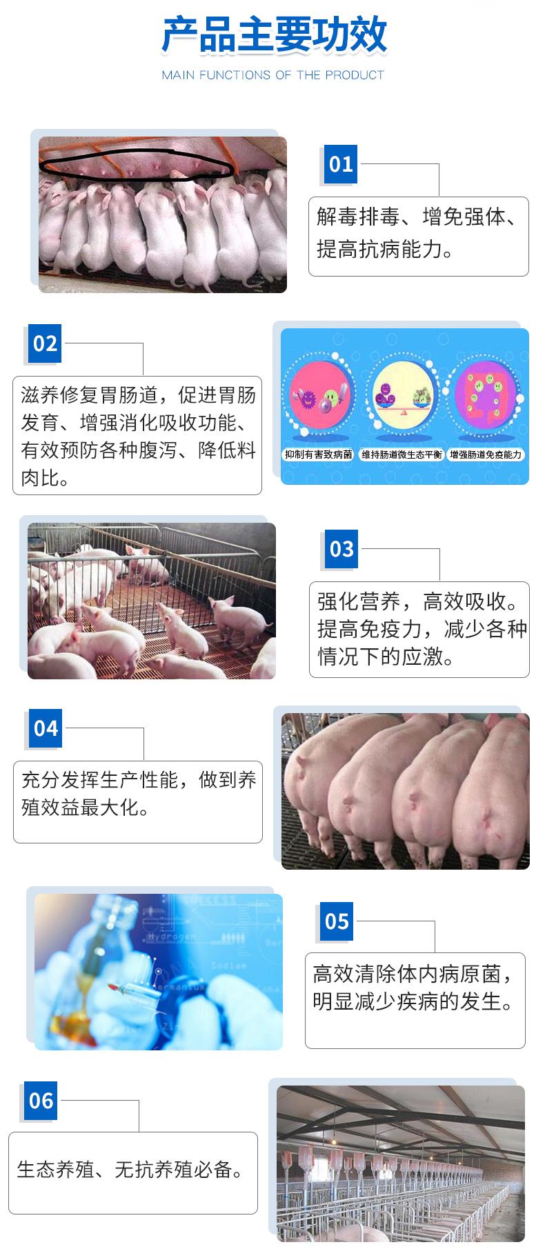 猪饲料07.jpg