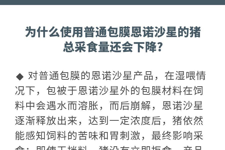 ennuoxiangqing_03.jpg
