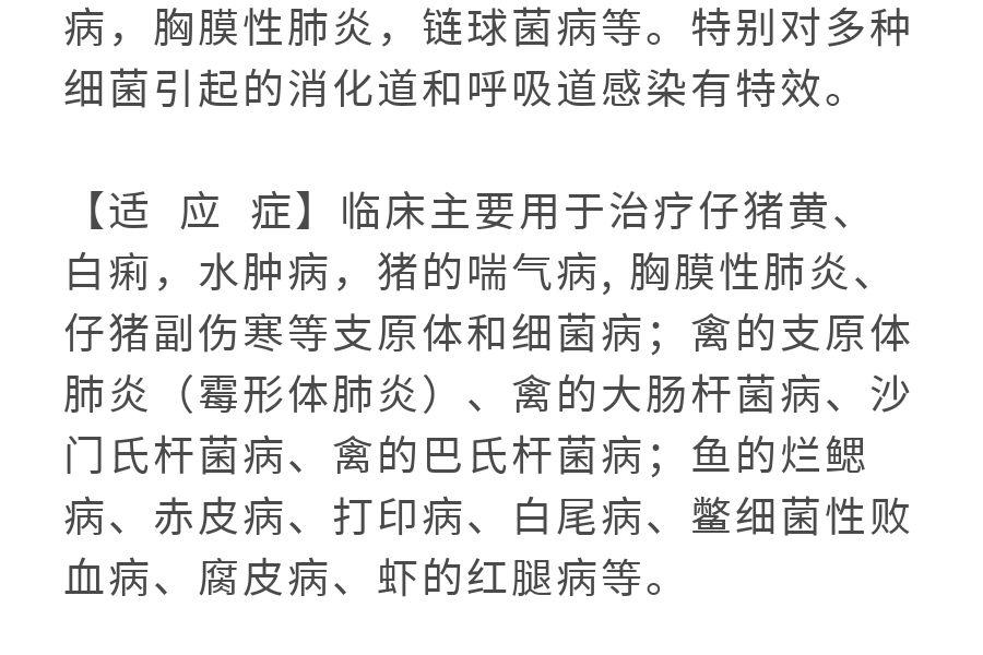 ennuoxiangqing_09.jpg