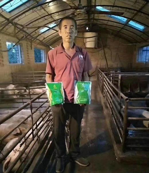 猪催肥用什么药好猪催肥药哪个牌子的比较好