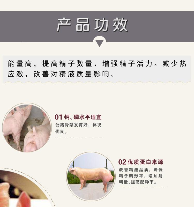 3+锌郎官_08.jpg