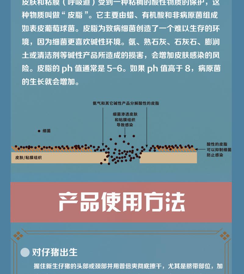 普倍爽_有赞详情页_04.png