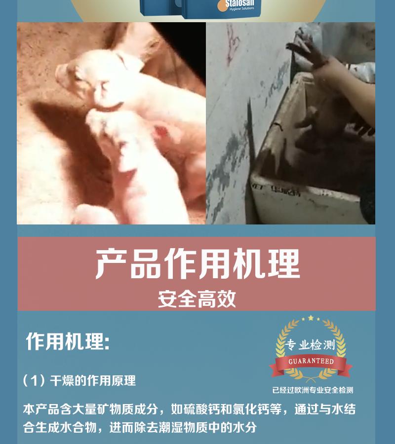 普倍爽_有赞详情页_02.png