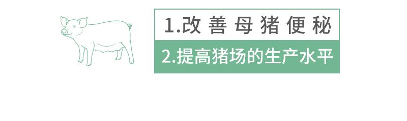 普肠通详情页_03.jpg