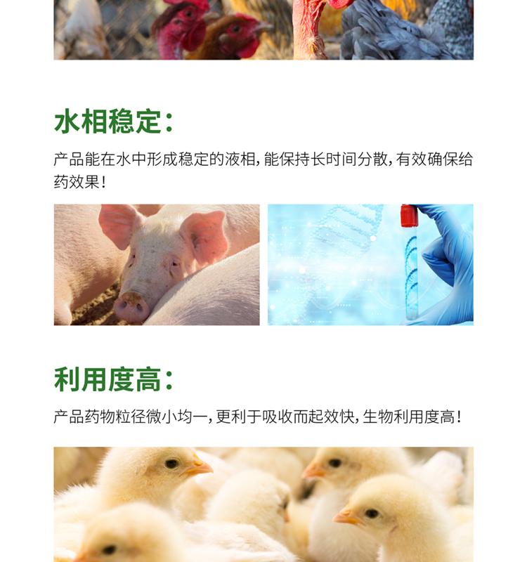 众福安_04.jpg