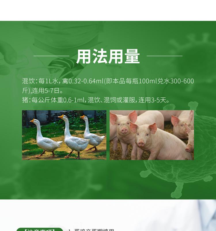 众福安_06.jpg