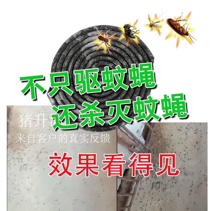 蚊香详情1.jpg