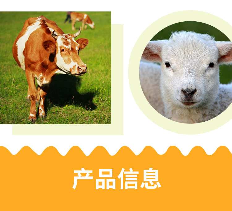 应激宝_08.jpg