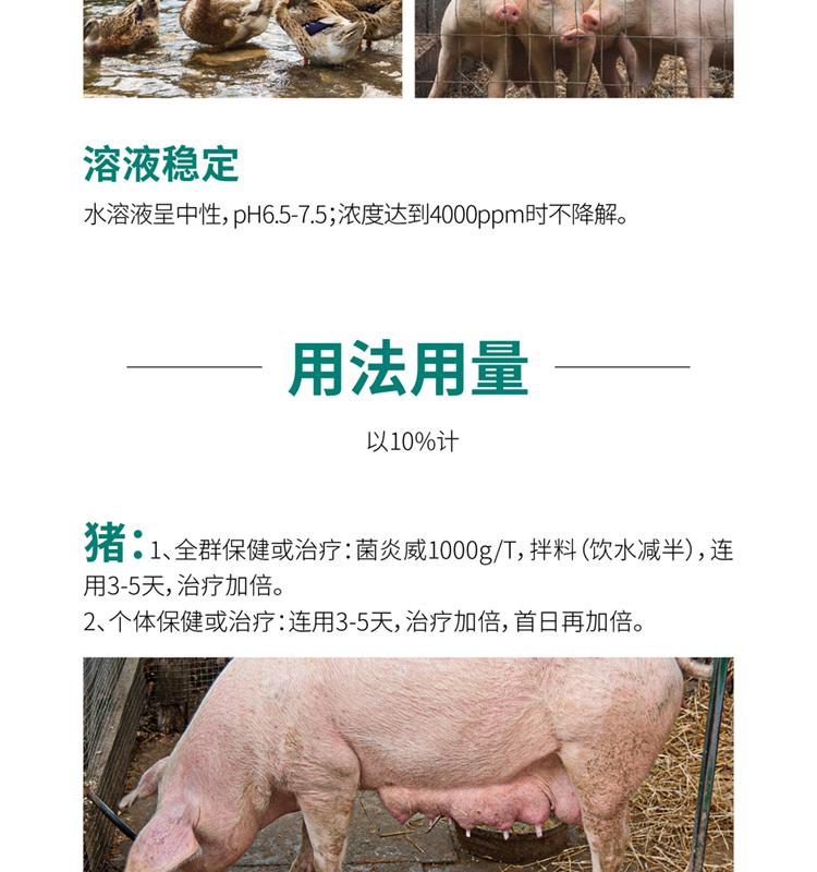 菌炎威_04.jpg