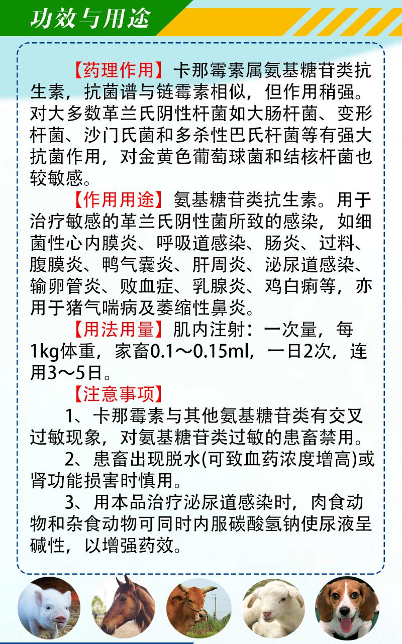 硫酸卡那霉素注射液详情页_03.jpg
