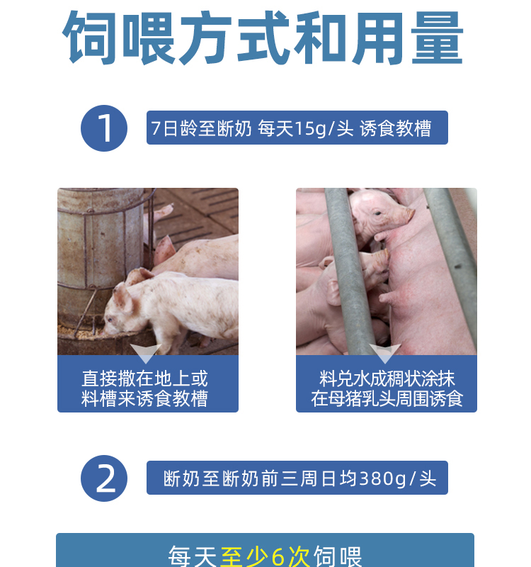 新猪奶详情_16.jpg