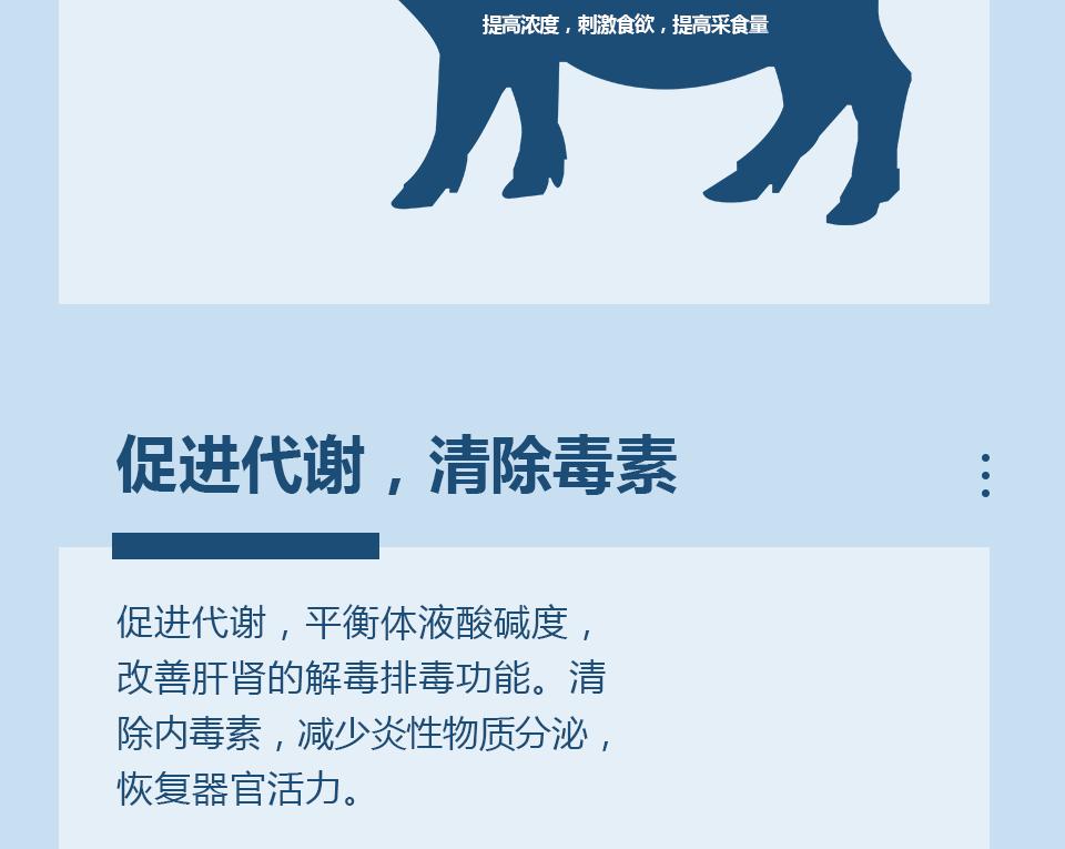 详情页-厌食专加_09.png
